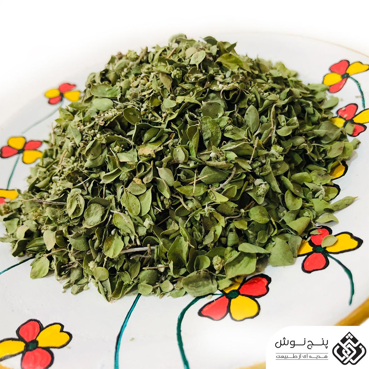 دارو گیاهی آویشن بهترین درمان کننده مشکلات تنفسی