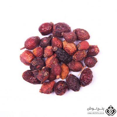 میوه نسترن (منبع ویتامین ث) 100گرمی