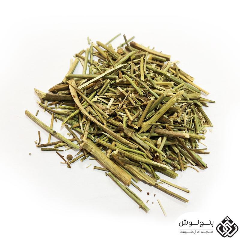 چوب کاسنی (درمان زردی نوزاد و کبد چرب) 50 گرمی